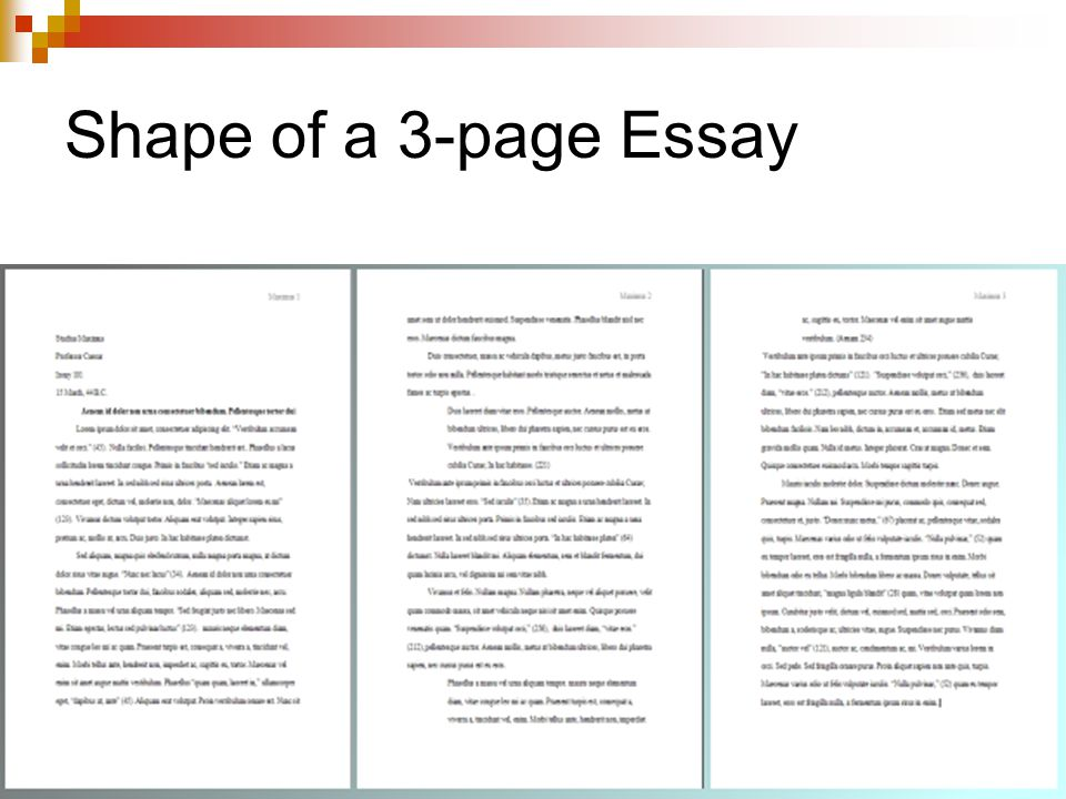Shape of a 3-page Essay