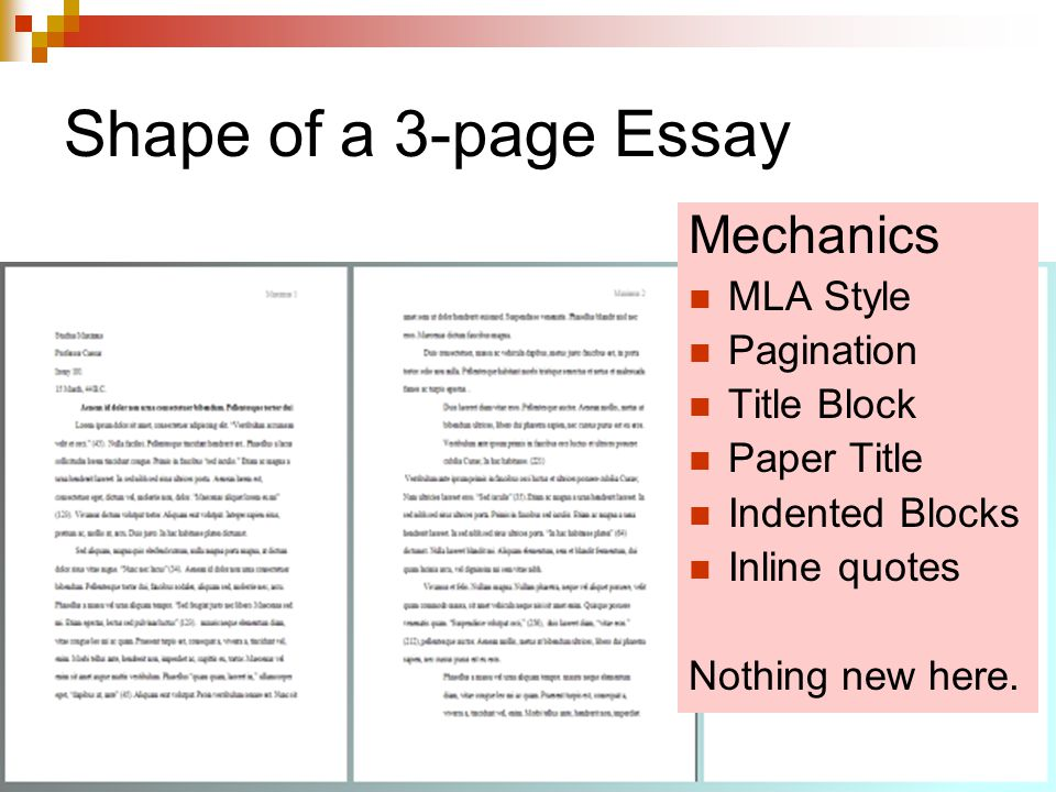 Page Essay and How a Student Should Compose It Correctly admissions essays review