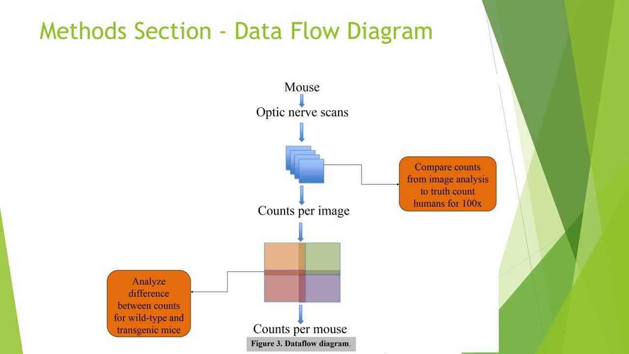 Methods Section - Data Flow Diagram