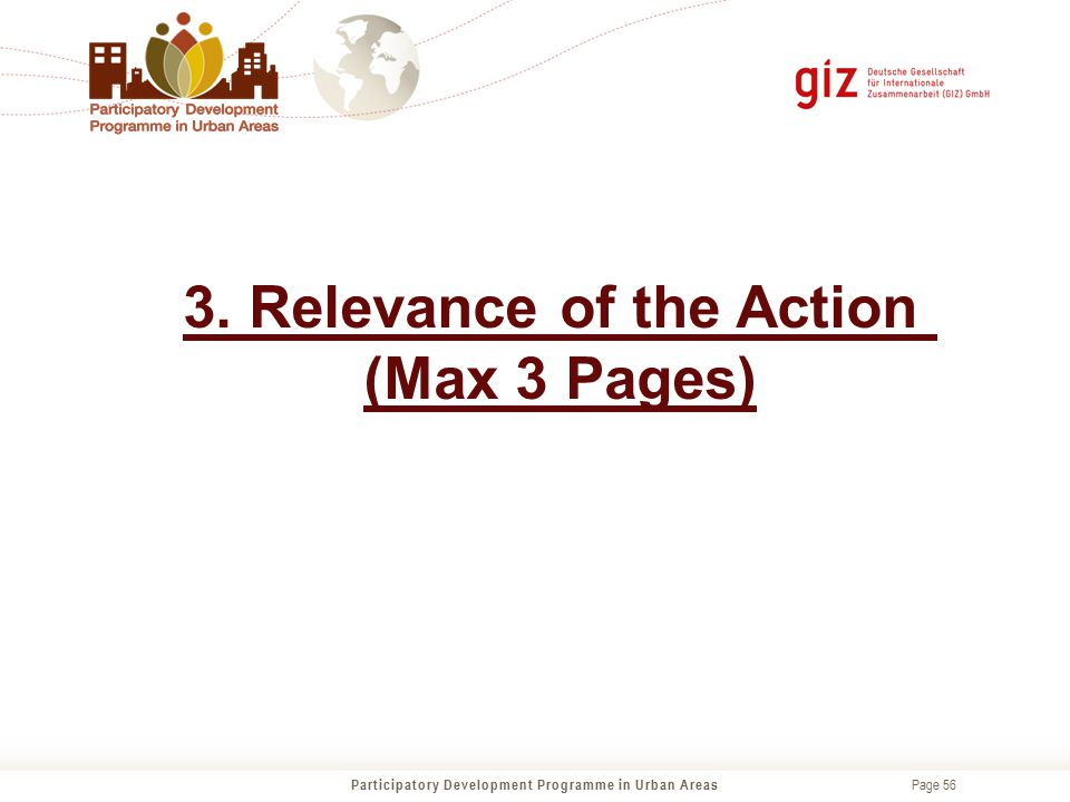 3. Relevance of the Action (Max 3 Pages)