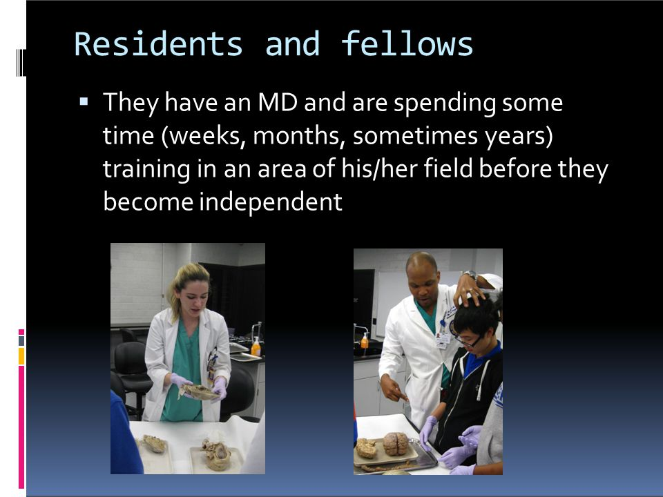Residents and fellows