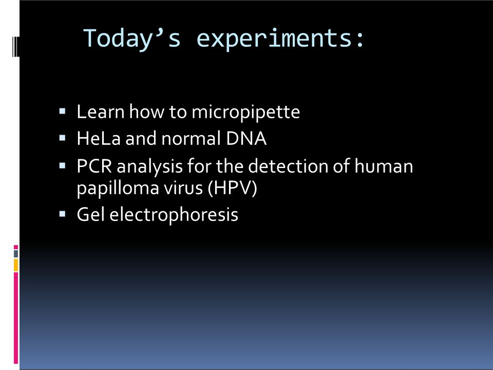 Today's experiments: Learn how to micropipette HeLa and normal DNA