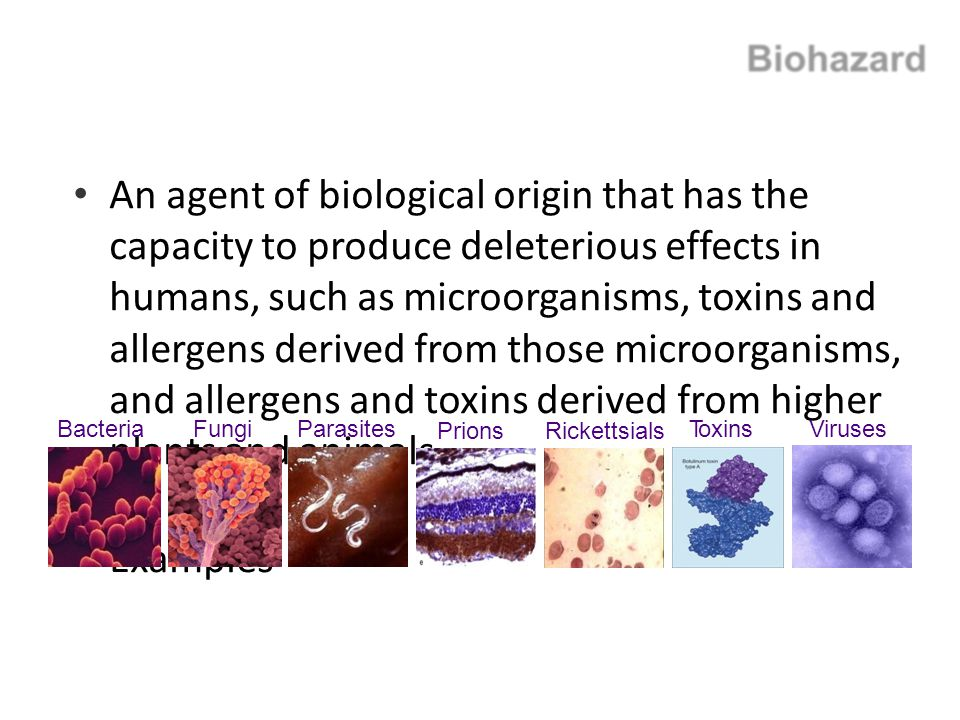 An agent of biological origin that has the capacity to produce deleterious effects in humans, such as microorganisms, toxins and allergens derived from those microorganisms, and allergens and toxins derived from higher plants and animals.