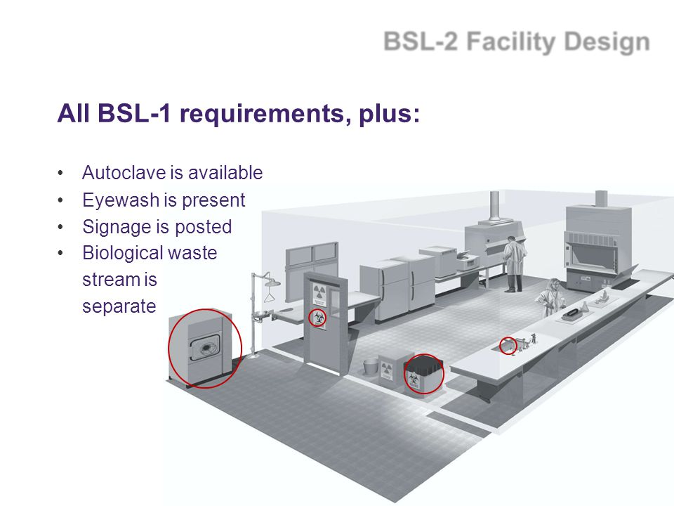 All BSL-1 requirements, plus: