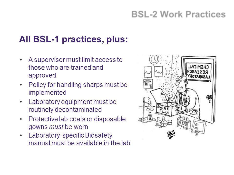 All BSL-1 practices, plus: