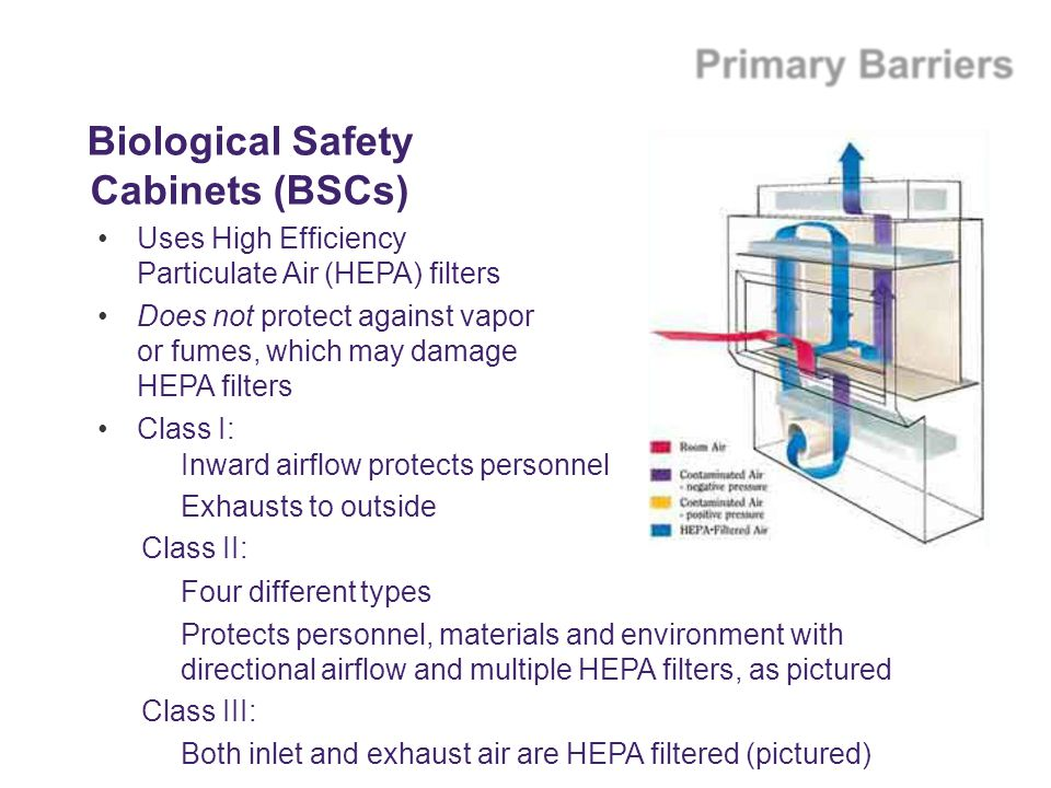 Biological Safety Cabinets (BSCs)
