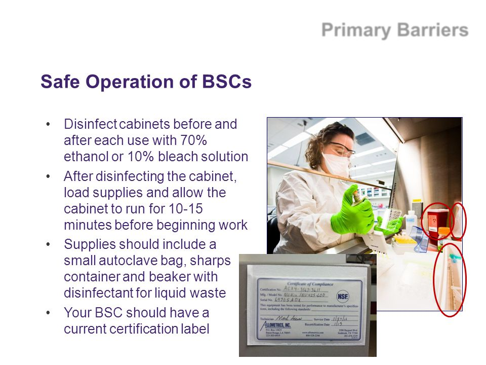 Safe Operation of BSCs Disinfect cabinets before and after each use with 70% ethanol or 10% bleach solution.