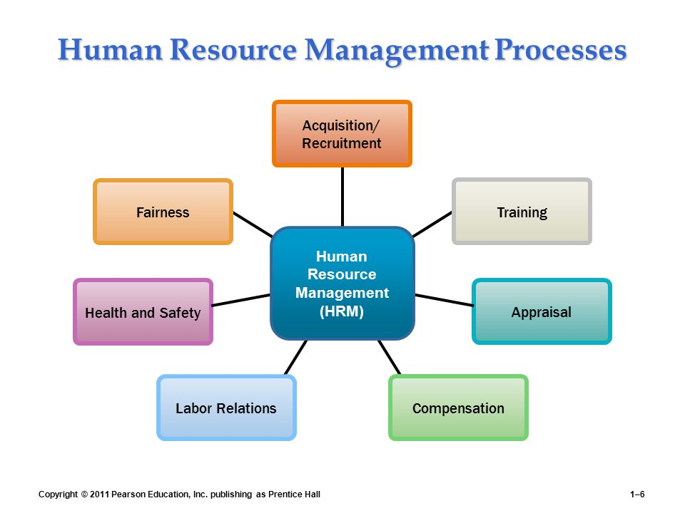 Human Resource Management Processes