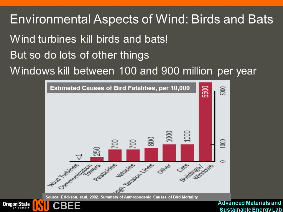 Environmental Aspects of Wind: Birds and Bats