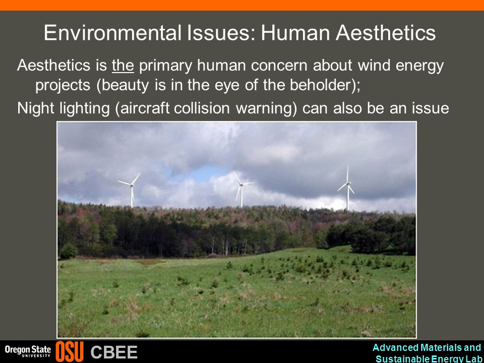 Environmental Issues: Human Aesthetics