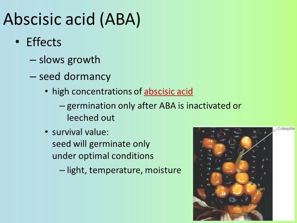 Abscisic acid (ABA) Effects slows growth seed dormancy