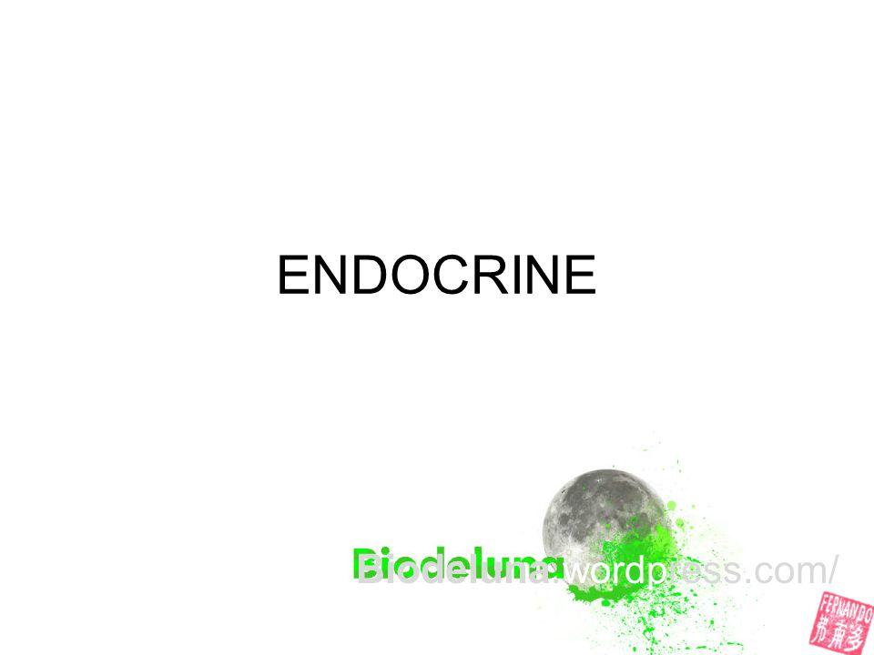 Biodeluna.wordpress.com/
