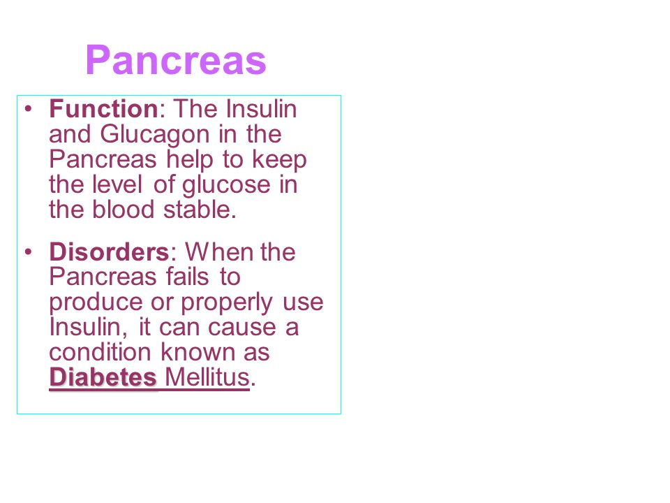 Pancreas Function: The Insulin and Glucagon in the Pancreas help to keep the level of glucose in the blood stable.