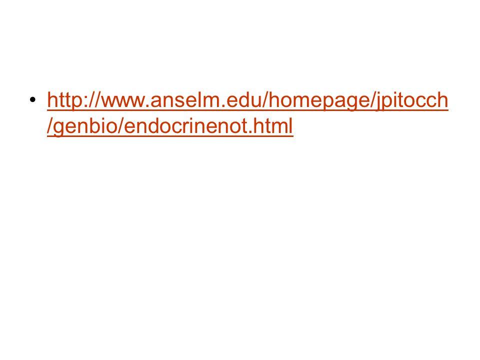 http://www.anselm.edu/homepage/jpitocch/genbio/endocrinenot.html