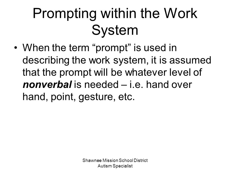 Prompting within the Work System