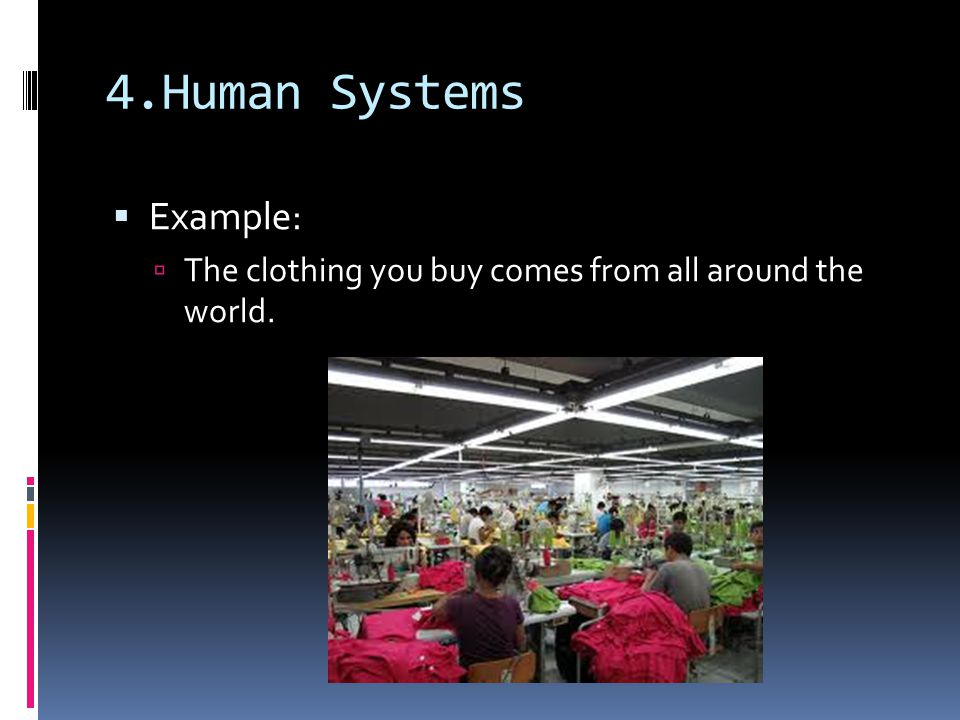 4.Human Systems Example: