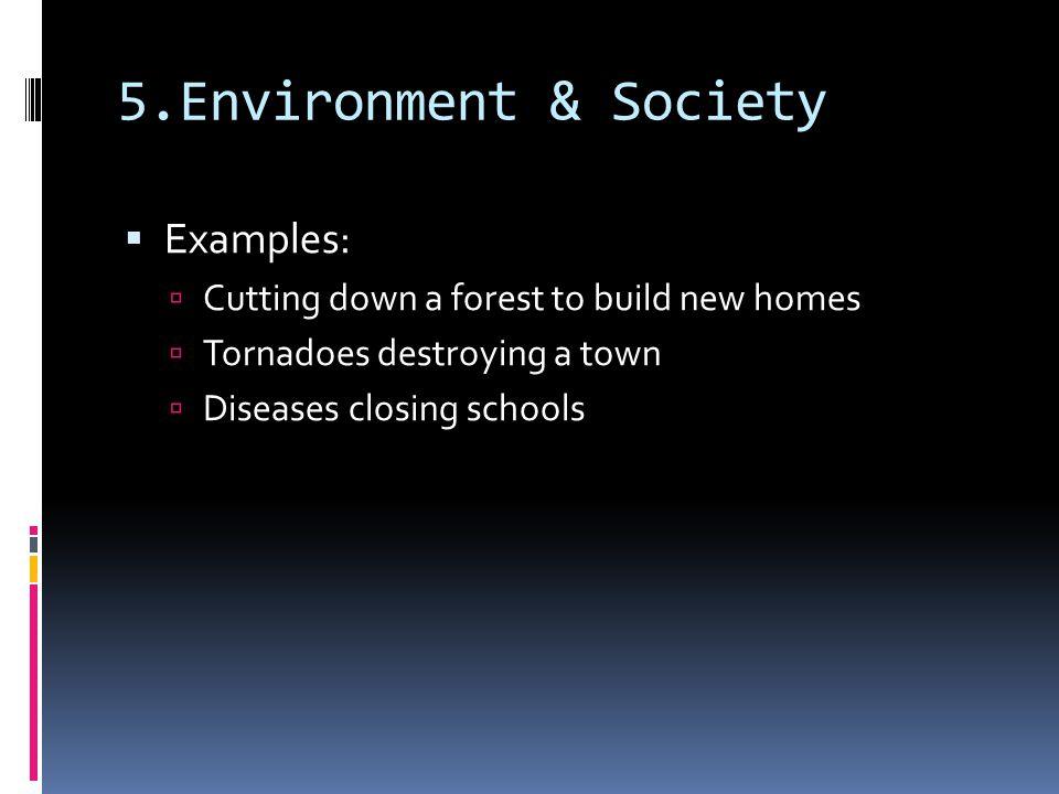 5.Environment & Society Examples: