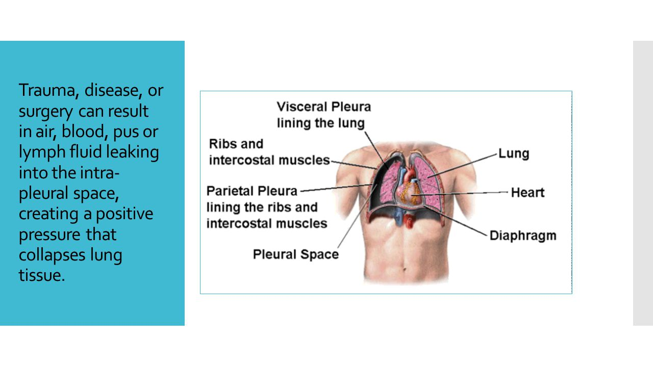 Trauma, disease, or surgery can result in air, blood, pus or lymph fluid leaking into the intra-pleural space, creating a positive pressure that collapses lung tissue.