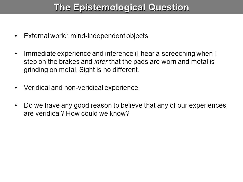 The Epistemological Question