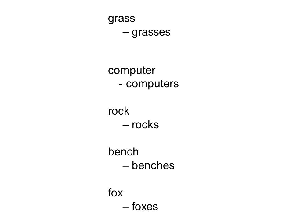 grass grasses computer - computers rock rocks bench benches fox foxes