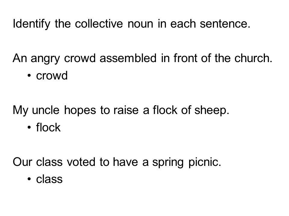 Identify the collective noun in each sentence.