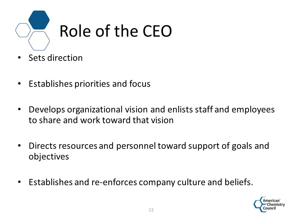 Role of the CEO Sets direction Establishes priorities and focus