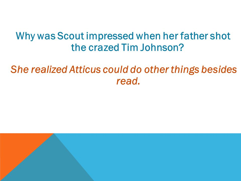 Why was Scout impressed when her father shot the crazed Tim Johnson