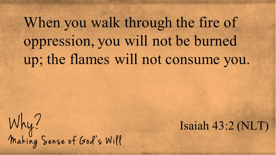 When you walk through the fire of oppression, you will not be burned up; the flames will not consume you.