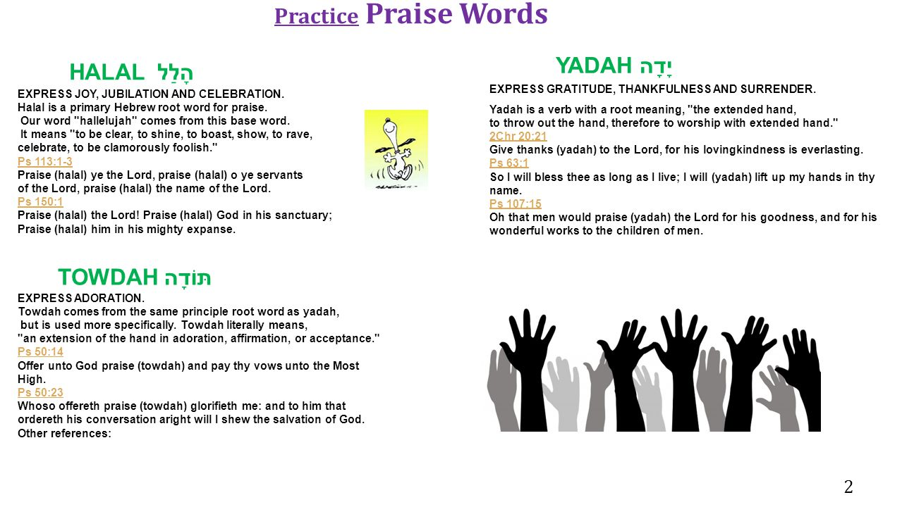 Practice Praise Words YADAH יָדָה HALAL הָלַל TOWDAH תּוֹדָה 2