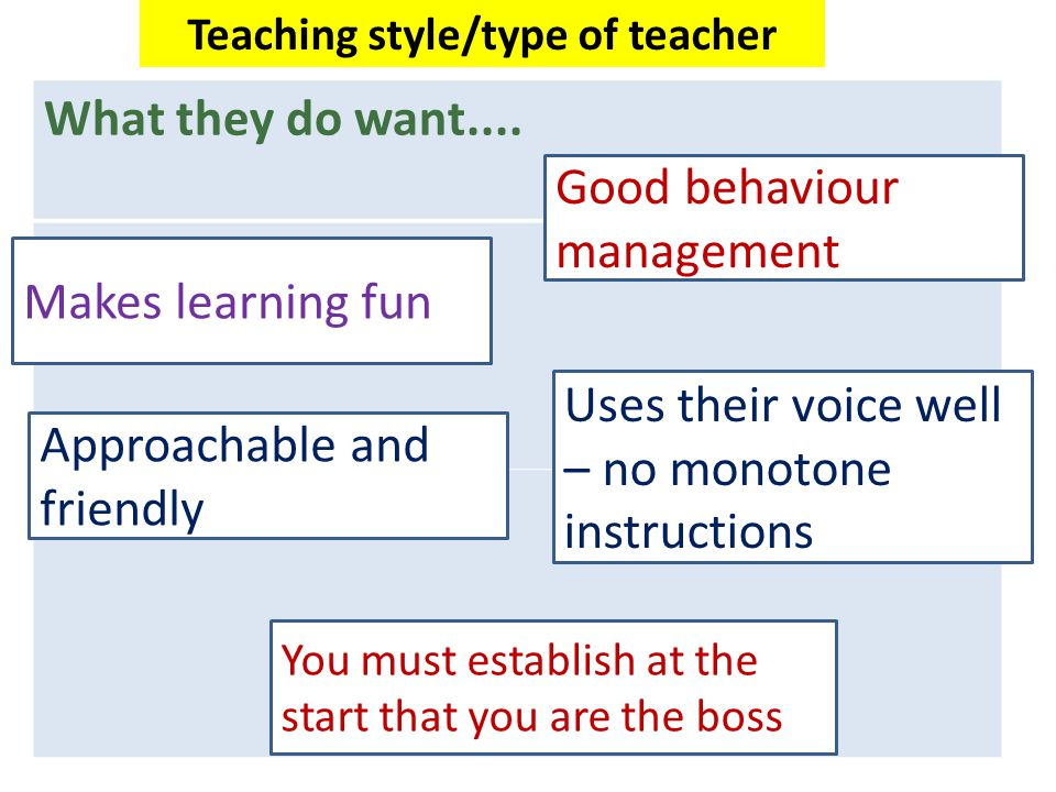 Teaching style/type of teacher