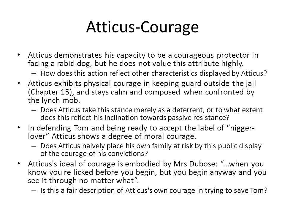 Atticus-Courage Atticus demonstrates his capacity to be a courageous protector in facing a rabid dog, but he does not value this attribute highly.