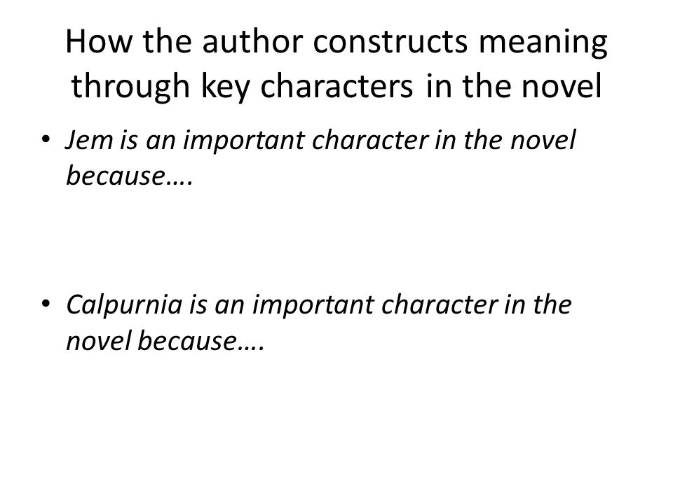 How the author constructs meaning through key characters in the novel