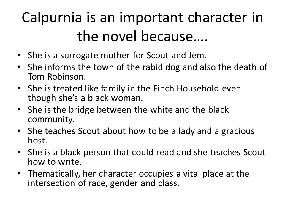 Calpurnia is an important character in the novel because….