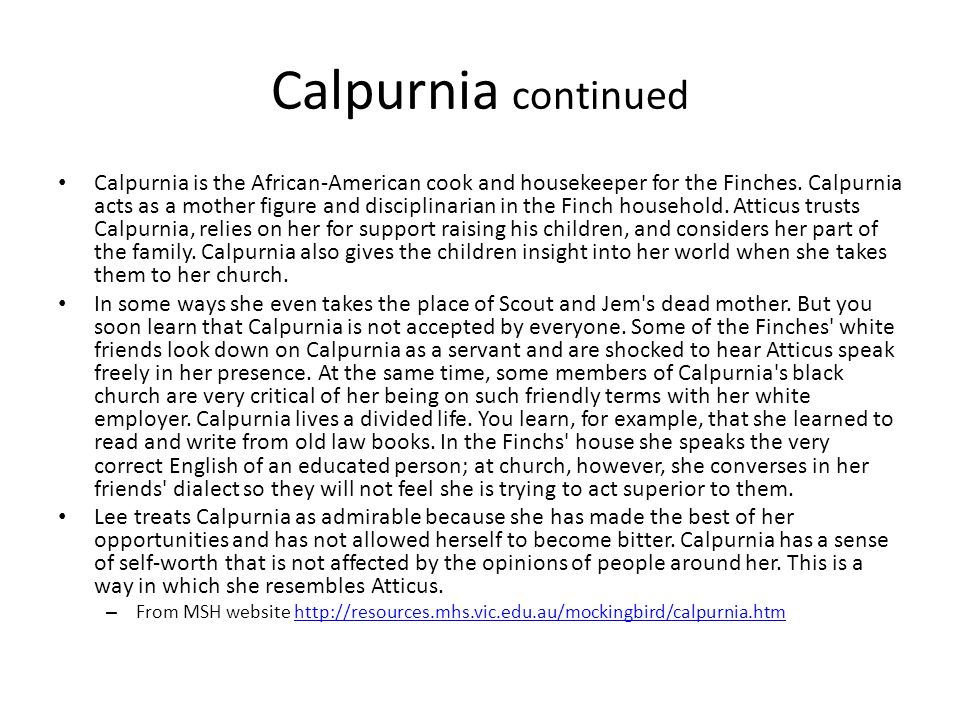 Calpurnia continued