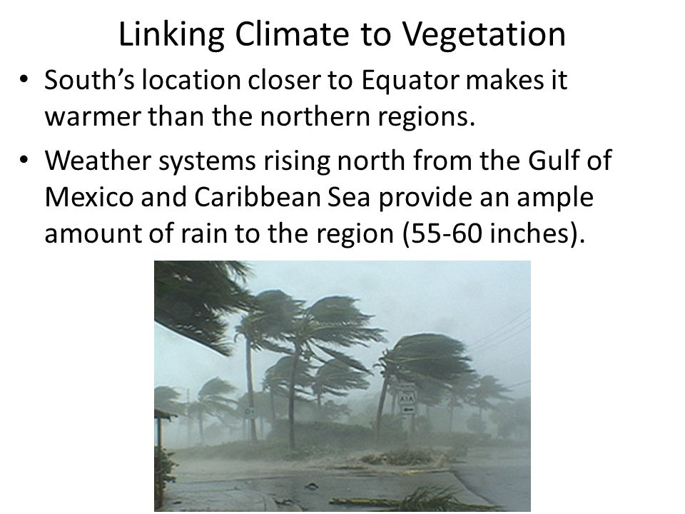 Linking Climate to Vegetation