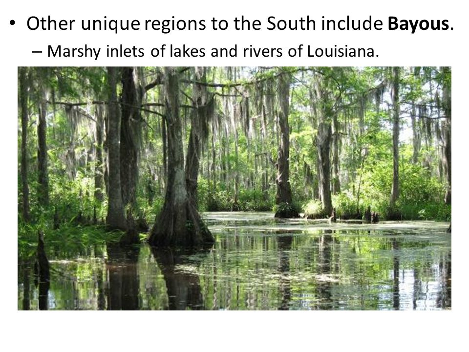 Other unique regions to the South include Bayous.