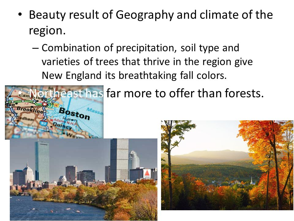 Beauty result of Geography and climate of the region.
