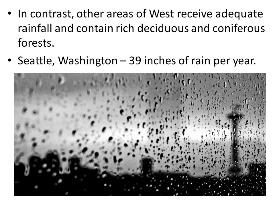 In contrast, other areas of West receive adequate rainfall and contain rich deciduous and coniferous forests.