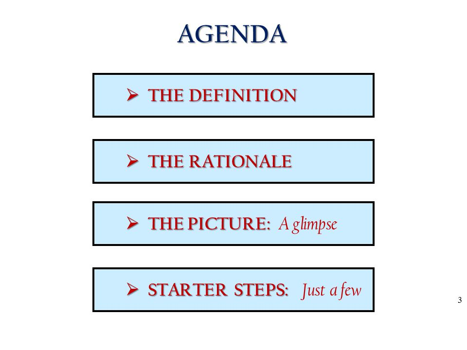 AGENDA  THE DEFINITION  THE RATIONALE  THE PICTURE: A glimpse