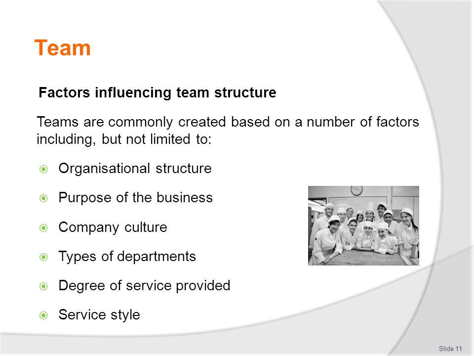 Team Factors influencing team structure