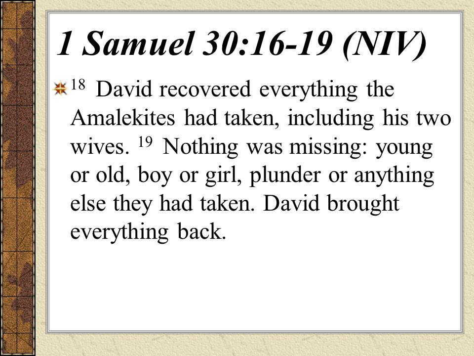 1 Samuel 30:16-19 (NIV)