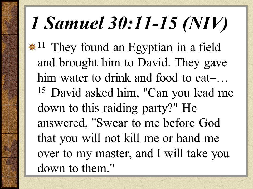 1 Samuel 30:11-15 (NIV)