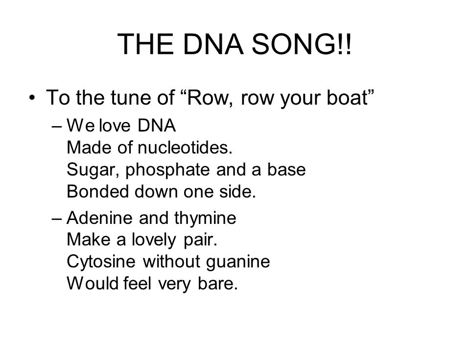 THE DNA SONG!! To the tune of Row, row your boat