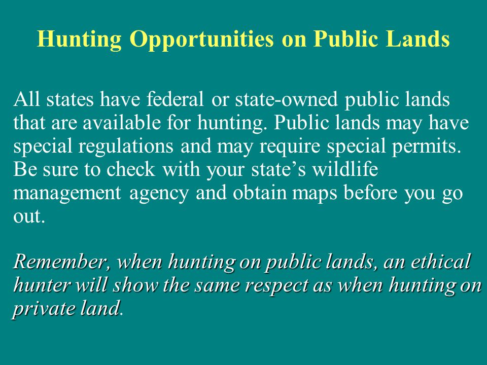 Hunting Opportunities on Public Lands