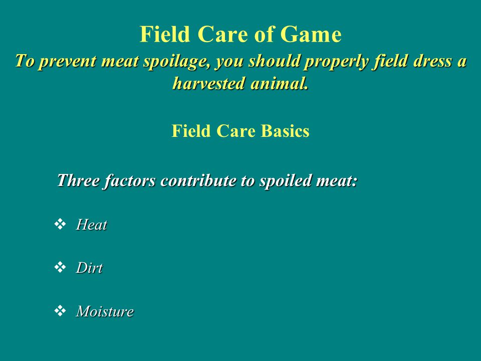 Field Care of Game To prevent meat spoilage, you should properly field dress a harvested animal.