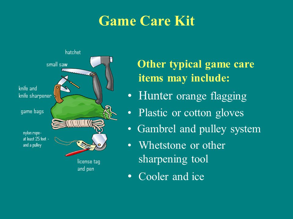 Game Care Kit Other typical game care items may include: