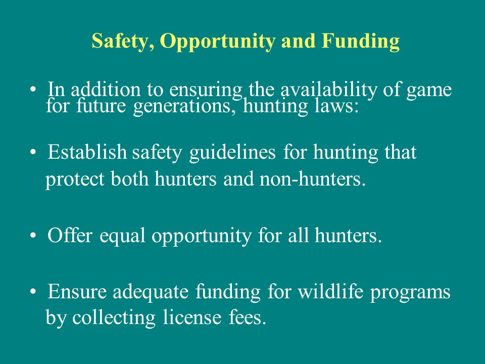 Safety, Opportunity and Funding