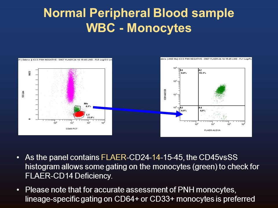Normal Peripheral Blood sample WBC - Monocytes