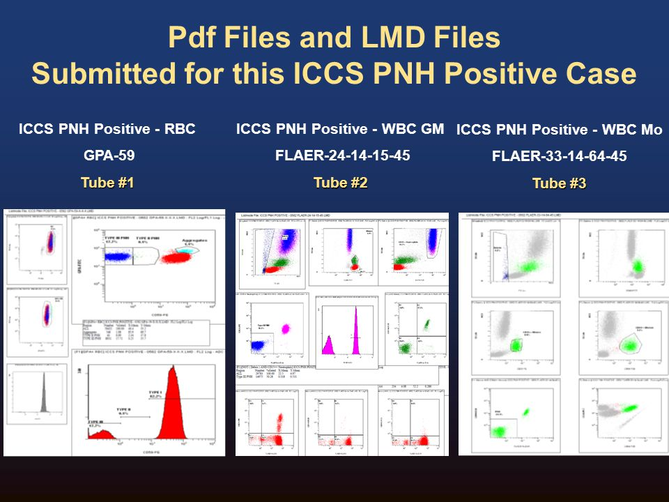 Pdf Files and LMD Files Submitted for this ICCS PNH Positive Case