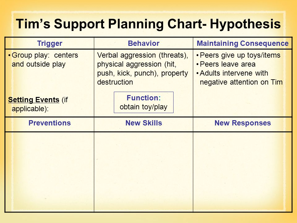 Tim's Support Planning Chart- Hypothesis